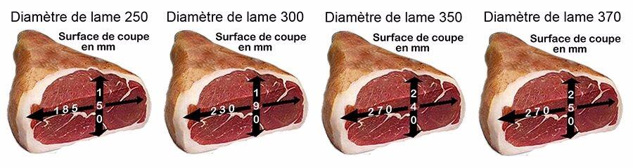 surface-de-coupe_MD.jpg
